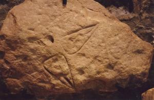 vulva images from Font de Gaume